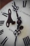 Im Zeichen der Zeit