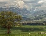 Blick auf Bad Mitterndorf