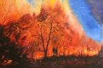 Die durchs Feuer gehen