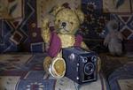 Teddy mit Kamera