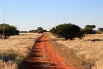 namibia_29.JPG