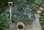 Der Garten besteht aus Arbeit und Schönheit II
