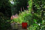 Der Garten besteht aus Arbeit und Schönheit III